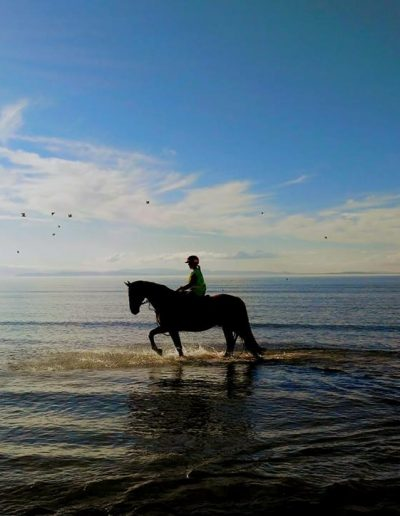 Beautiful Beach Riding